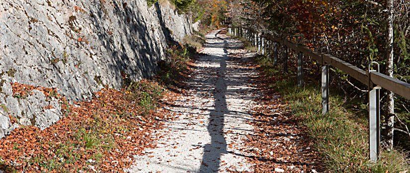 Herbst-Wege